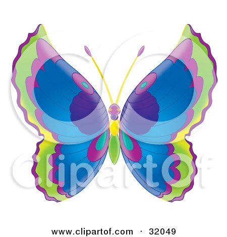 Clipart Illustration of a Butterfly With Green, Purple And Blue Wings And A Purple, Yellow And Green Body by Alex Bannykh