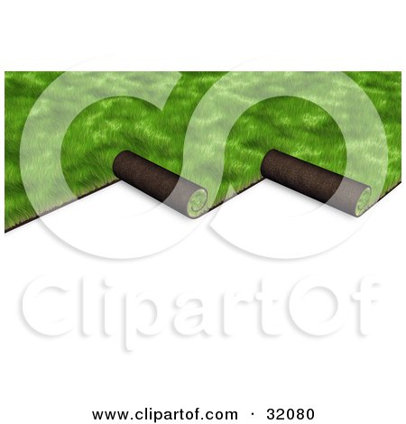 Clipart Illustration of Green 3d Sod Being Unrolled To Cover A Yard, On A White Background by Frog974