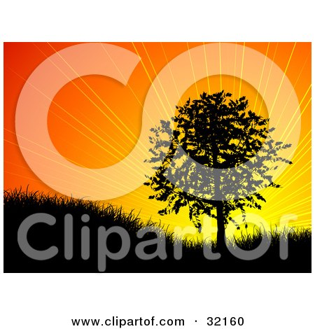 Clipart Illustration of a Bursting Orange Sunrise Or Sunset Silhouetting A Tree On A Hill In Black by KJ Pargeter
