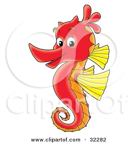 Clipart Illustration of a Cute Red Seahorse With Yellow Fins, Facing Left And Smiling At The Viewer by Alex Bannykh