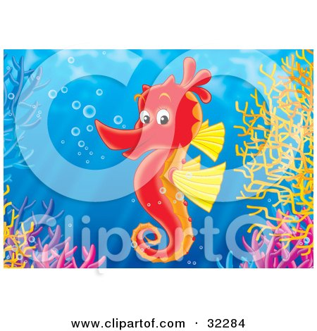 Clipart Illustration of a Friendly Red And Yellow Seahorse With Bubbles, Swimming Over A Coral Reef by Alex Bannykh