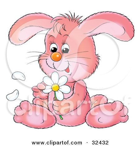 Clipart Illustration of a Cute Pink Bunny Rabbit Sitting And Picking Petals Off Of A White Daisy Flower by Alex Bannykh