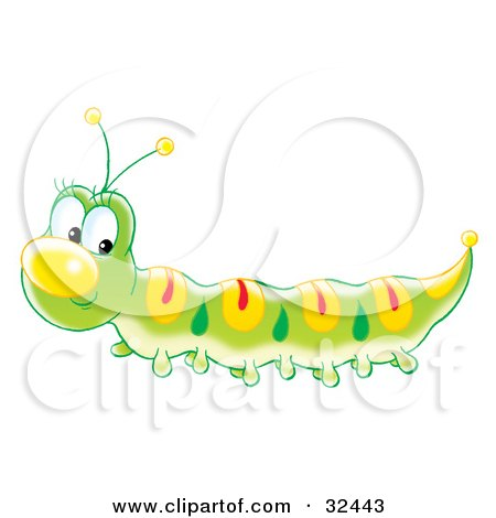 yellow black and white caterpillar. Caterpillar With Yellow