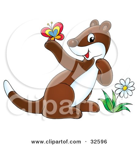 Clipart Illustration of a Cute Brown And White Ferret By A Flower, Admiring A Butterfly On Its Paw by Alex Bannykh