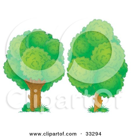 Clipart Illustration of Two Lush Green Trees by Alex Bannykh