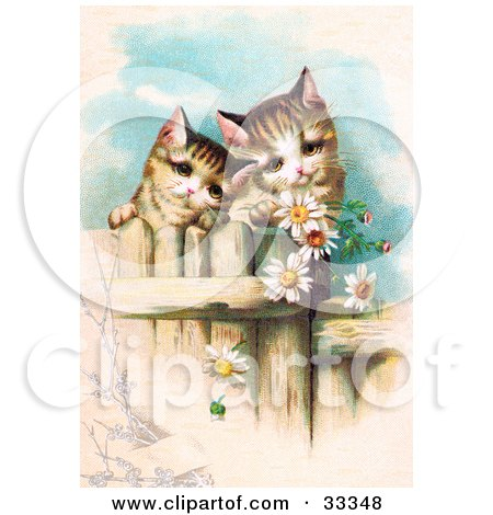 Clipart Illustration of Two Curious Victorian Kittens Peering Over A Wooden Fence, Gazing At Daisy Flowers by OldPixels