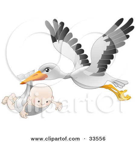 Clipart Illustration of a White Stork With Black Tipped Wings, Flying With A Happy Baby In A Cloth by AtStockIllustration