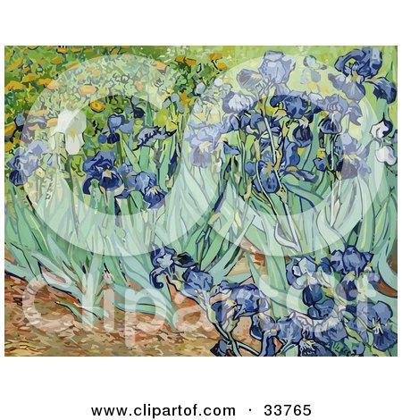 Flower Bed Of Iris Flowers, Original By Vincent Van Gogh Posters, Art Prints