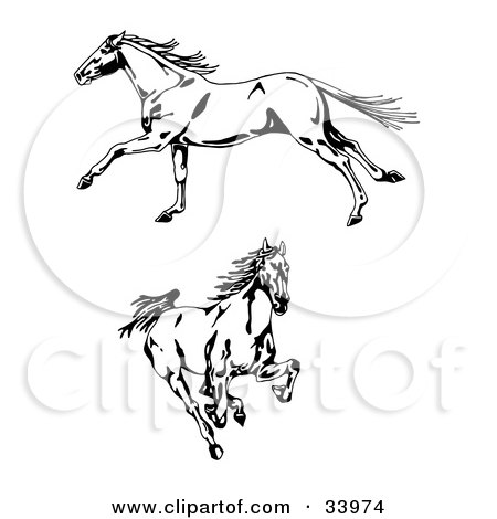 Clipart Illustration of Two Galloping Wild Horses, One In Profile, Running To The Left, One Running Forward by C Charley-Franzwa