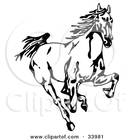 Clipart Illustration of a Black And White Wild Mustang Running Forward Towards The Viewer by C Charley-Franzwa