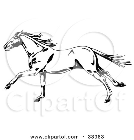 Clipart Illustration of a Black And White Wild Horse In Profile, Running To The Left, Its Tail And Mane Waving In The Wind by C Charley-Franzwa