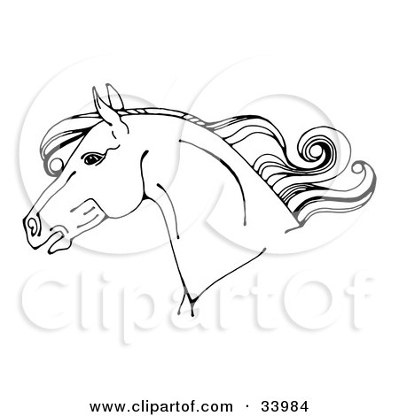 Clipart Illustration of a Black And White Horse Head In Profile, With A Curly Mane by C Charley-Franzwa