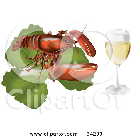 Clipart Illustration of a Red Lobster On Top Of A Bed Of Lettuce, Beside A Glass Of White Wine Or Champagne by Eugene