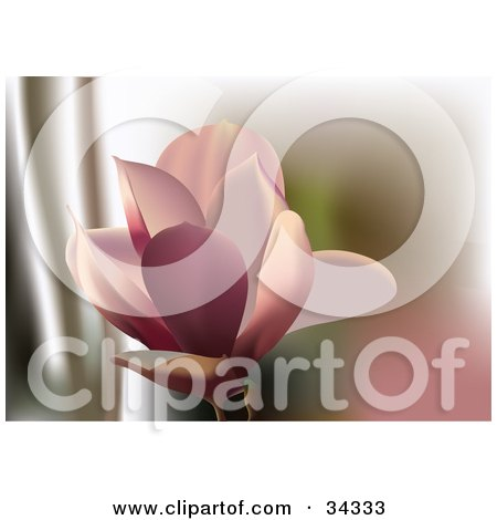 Clipart Illustration of a Beautiful Pink Lily Flower Blooming by Eugene