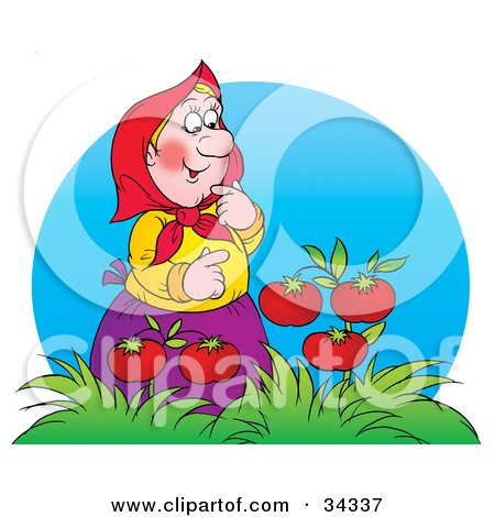 Clipart Illustration of a Sweet Blond Granny Admiring Fresh Juicy Tomatoes On A Vine by Alex Bannykh