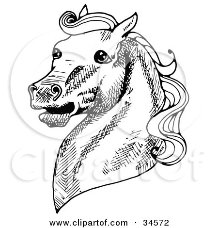 Clipart Illustration of a Muscular Horse's Head With A Curly Mane, Facing Left by C Charley-Franzwa