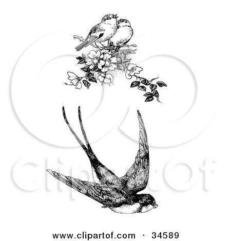 Clipart Illustration of a Flying Swallow And Two Singing Finches On A Blossoming Tree Branch by C Charley-Franzwa