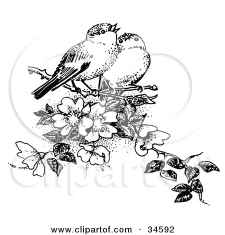 Clipart Illustration of a Pair Of Finches Whistling While Perched In A Flowering Tree by C Charley-Franzwa