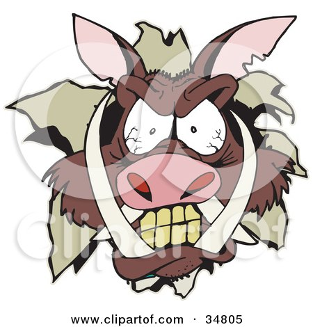 Clipart Illustration of an Angry Boar's Head Breaking Through A Wall by Dennis Holmes Designs