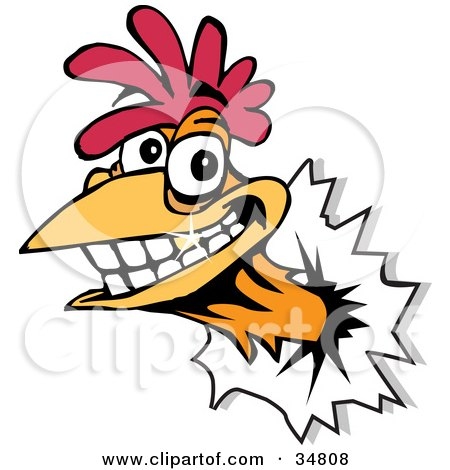 Clipart Illustration of a Smiling Rooster With A Gold Tooth, Breaking His Head Through A Wall by Dennis Holmes Designs