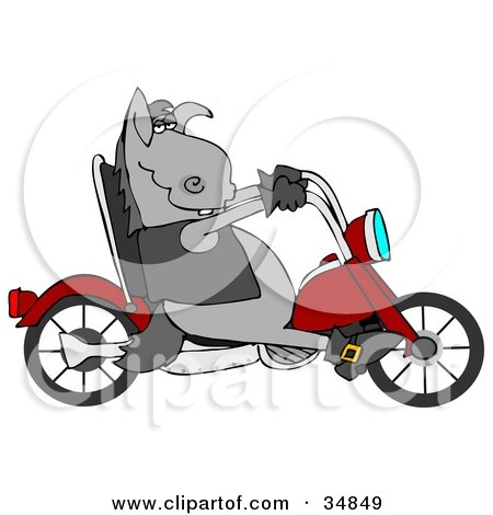 Cool Donkey Biker Riding A Red Motorcycle Posters, Art Prints