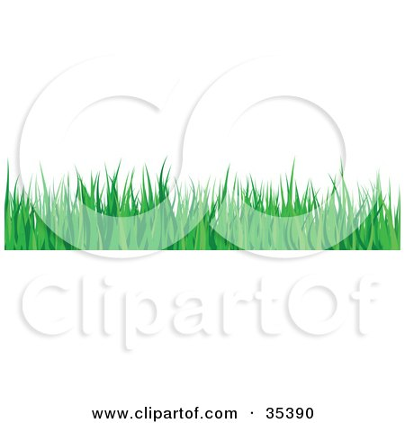 Clipart Illustration of a Border Of Lush Green Blades Of Grass by KJ Pargeter