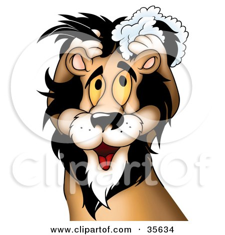 Clipart Illustration of a Cute Yellow Eyed Male Lion Washing His Mane With Shampoo by dero