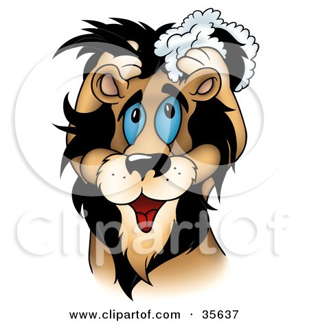 Clipart Illustration of a Cute Blue Eyed Male Lion Washing His Mane With Shampoo by dero