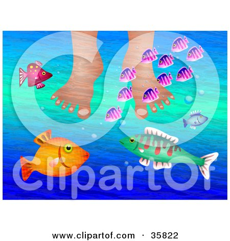 Clipart Illustration of a Person Soaking Their Feet In Water While Curious Colorful Fish Swim Around by Prawny