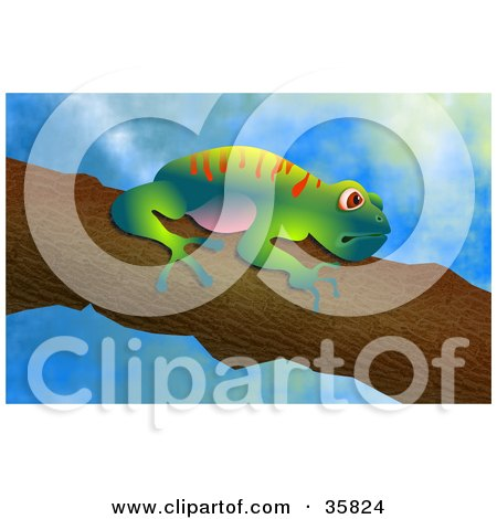 Clipart Illustration of a Cute Colorful Tree Frog Clinging To A Branch, Over A Sky Background by Prawny