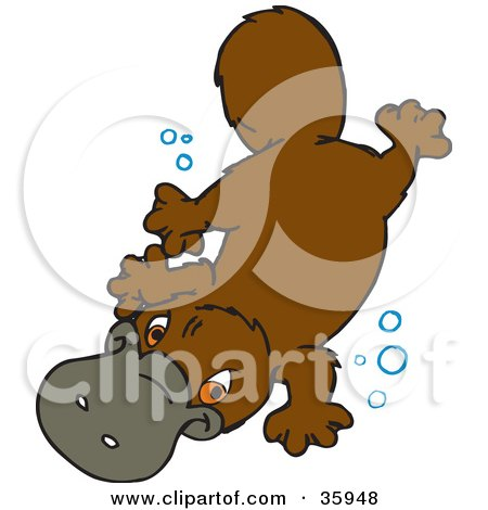 Cartoon of a Cute Australian Platypus - Royalty Free ... Underwater Clipart Black And White