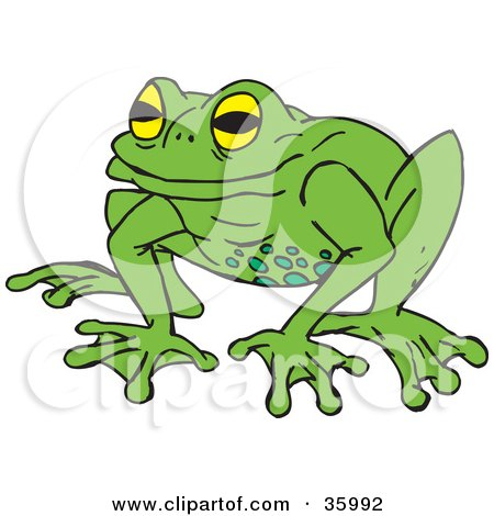 Clipart Illustration of a Yellow Eyed Green Frog With Spots On Its Belly by Dennis Holmes Designs