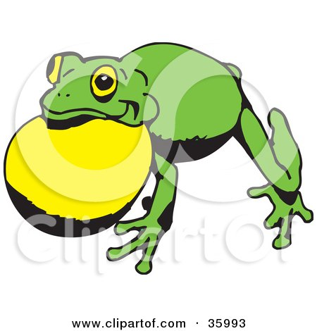 Clipart Illustration of a Green Frog With Air In Its Throat Pouch by Dennis Holmes Designs