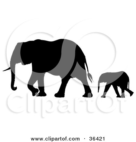 Clipart Illustration of a Black Silhouetted Baby Elephant Following Behind Its Mother by dero