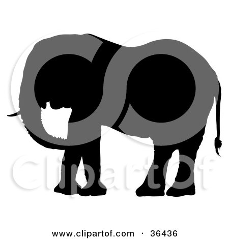 Clipart Illustration of a Black Silhouetted Tusked Adult Elephant Facing Left by dero