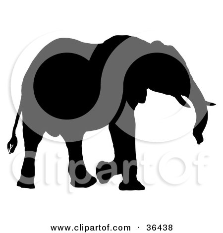 Clipart Illustration of a Black Silhouetted Adult Elephant Walking Right by dero