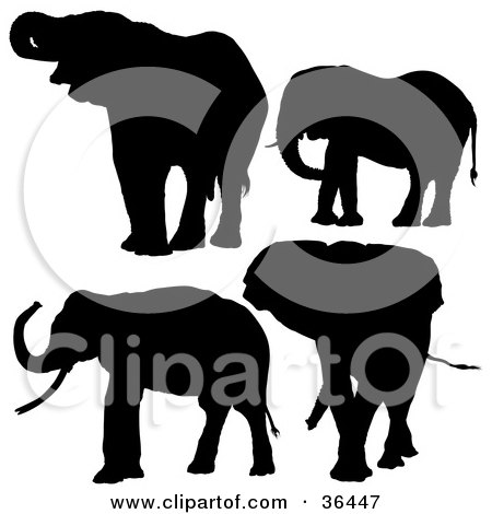Clipart Illustration of Four Silhouetted Elephants in Black by dero