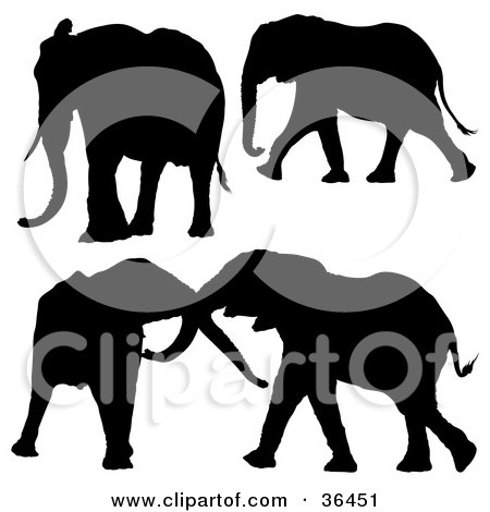 Clipart Illustration of Four Elephants Silhouetted in Black by dero