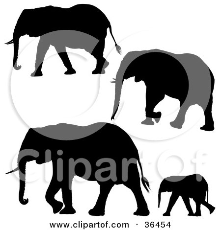 Clipart Illustration of Four Black Elephant Silhouettes by dero