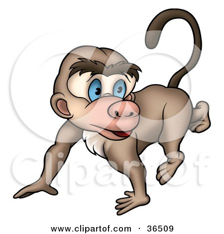 Clipart Illustration of a Cute Blue Eyed Brown Monkey Walking On All Fours by dero