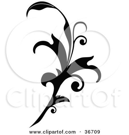 Black Silhouetted Elegant Leafy Scroll Design Posters, Art Prints