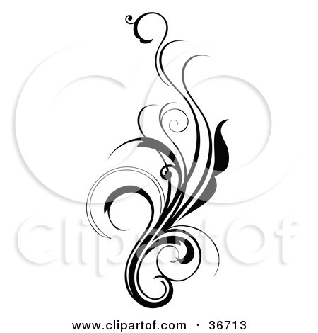 Elegant And Curly Black And White Design Scroll Posters, Art Prints