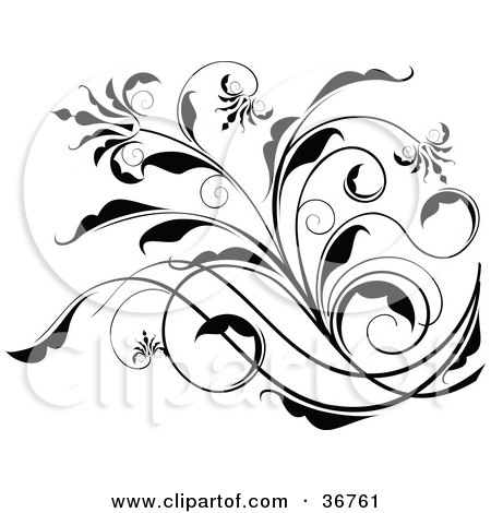 Clipart Illustration Of An Elegant Black And White Floral Scroll