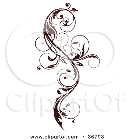 Clipart Illustration of a Dark Brown Grungy Curly Vine Scroll Design Element by OnFocusMedia