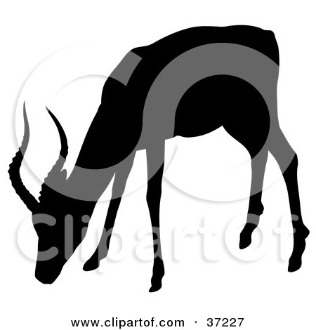 Clipart Illustration of a Black Silhouette Of A Grazing Antelope by dero