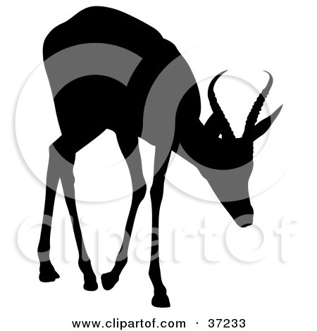 Clipart Illustration of a Black Silhouette Of A Cautious Young Antelope by dero