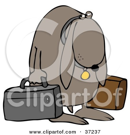 Sad Dog Sulking And Carrying Two Bags After Being Kicked Out Of His Home Posters, Art Prints