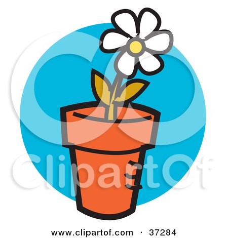 Clipart Illustration of a Single White Daisy Flower Growing In A Pot by Andy Nortnik