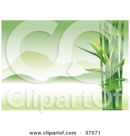 Clipart Illustration of Green Bamboo Stalks Framing An Asian Landscape Of Foggy Green Mountains by Eugene