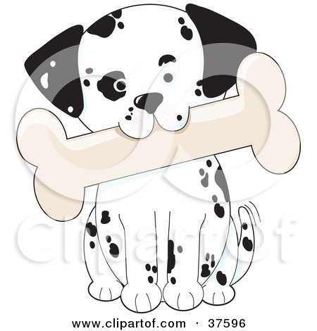 Clipart Illustration of a Cute Dalmatian Puppy Dog Tilting His Head And Biting A Bone by Maria Bell